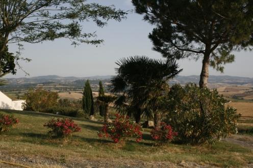 Foto: Blick in die Landschaft