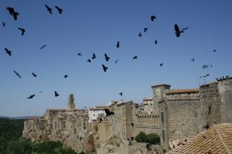 Ansicht Pitigliano mit Krähen